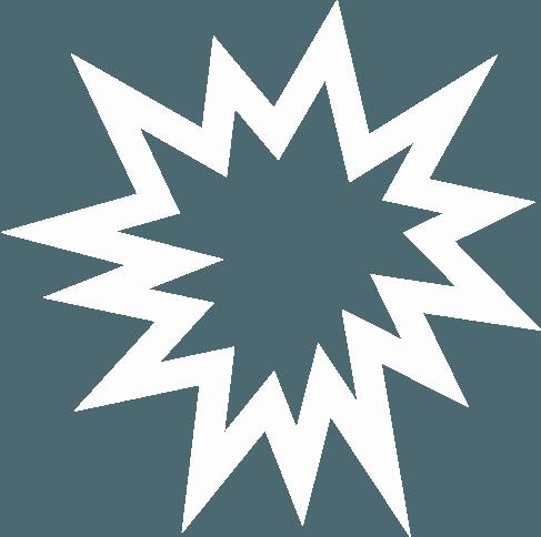 Icon - Blitzlichtabwehr unserer MarderSICHER-Systeme